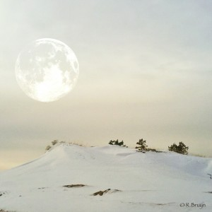 Bruyn_Moonlight on dune_iphonography